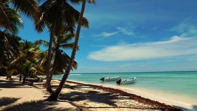 Strandfoto mit Meerblick und Palmen